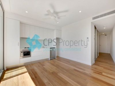 BRAND NEW ONE BEDROOM APARTMENT IN SURRY HILLS OPEN FOR INSPECTION: BY APPOINTMENT