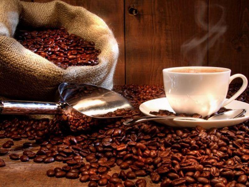 CAFE BUSINESS FOR URGENT SALE