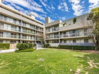 ONE WEEK FREE! TWO SPACIOUS BEDROOM PENTHOUSE IN CONCORD/BURWOOD