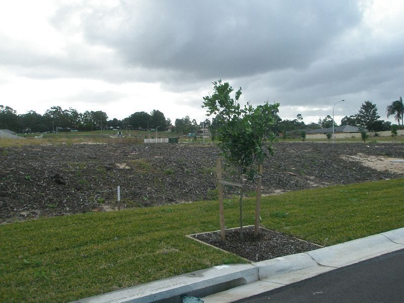 Lot 237 in a proposed subdivison of 87 Mt Hall Road RAYMOND TERRACE 2324