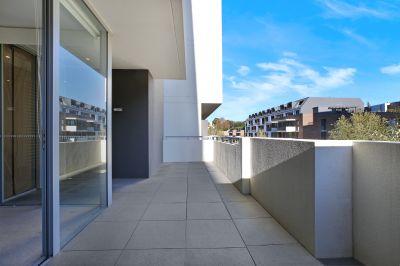 Over Sized Studio Apartment In Glebe