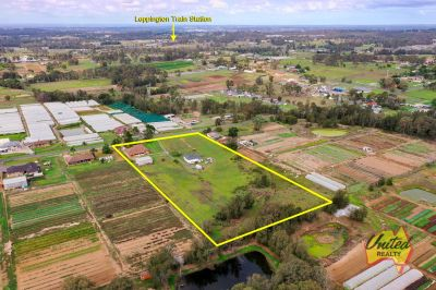 Investors/Land Bankers - Owner Wants it SOLD!
