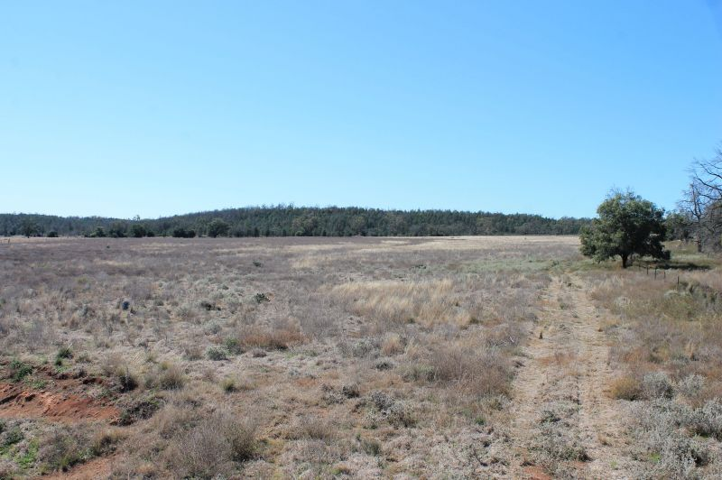For Sale By Owner: 9540 Oxley Highway, Gunnedah, NSW 2380