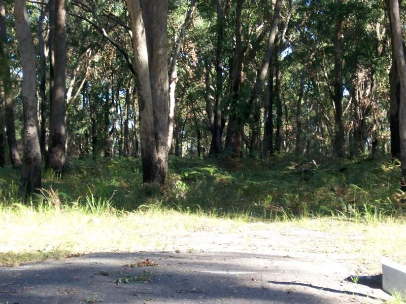 1412 Moffats Road SWAN BAY 2471