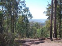 Lot 197 Millingandi Road Millingandi, Nsw