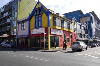 134 Vivian Street, Te Aro
