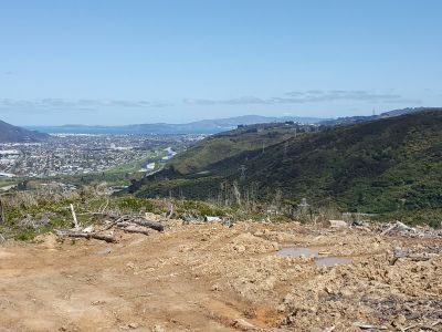 Old Haywards Road, Lower Hutt