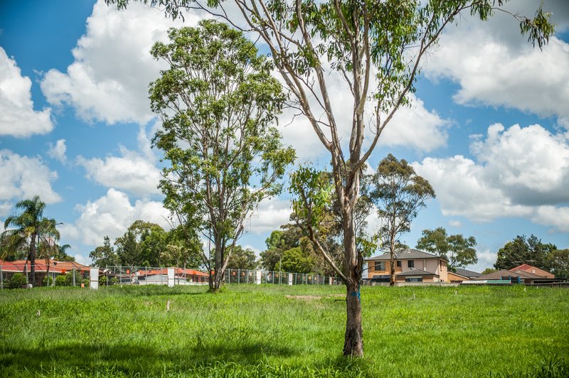 Glendenning Lot 14 Ainsley Avenue