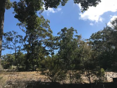 Vacant Land - 436m2 at Kingfisher Bay