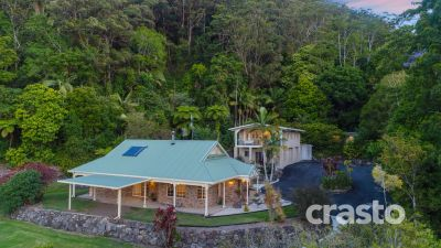 Tranquil Rainforest Retreat on Lush 10 acres with Views