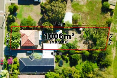 Endless Potential On 1006m2 approx