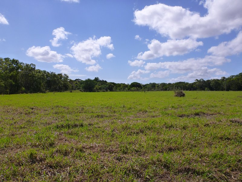 For Sale By Owner: Lot 1 Endeavour Valley Road, Cooktown, QLD 4895