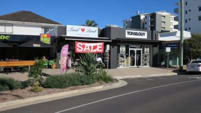 TRENDY RETAIL OPPORTUNITY | COTTON TREE