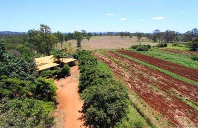 BRICK RESIDENCE ON 140 ACRES OF RED SOIL! LOADS OF FRUIT TREES PLUS MUCH MUCH MORE...