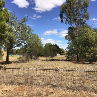 Lot 4 Lachlan Street, Boree Creek