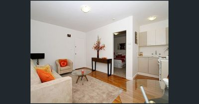 Great Apartment in Great Location