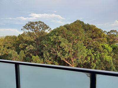 POTTS HILL, NSW 2143