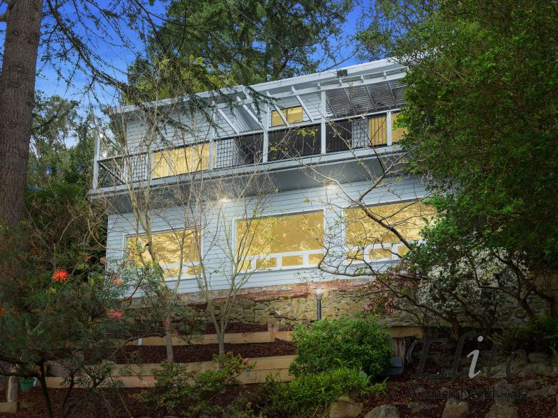 Million-Dollar Views with Leafy Seclusion