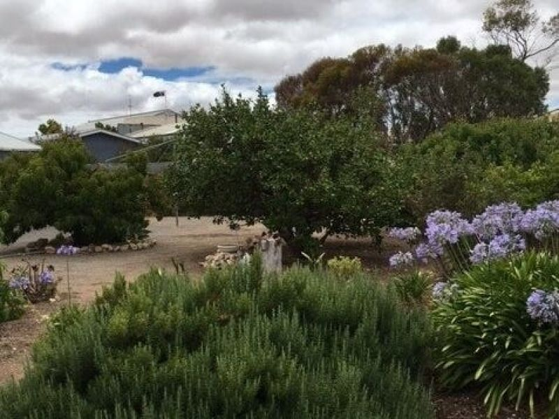 For Sale By Owner: 5 Waterloo Bay Road, Yorketown, SA 5576
