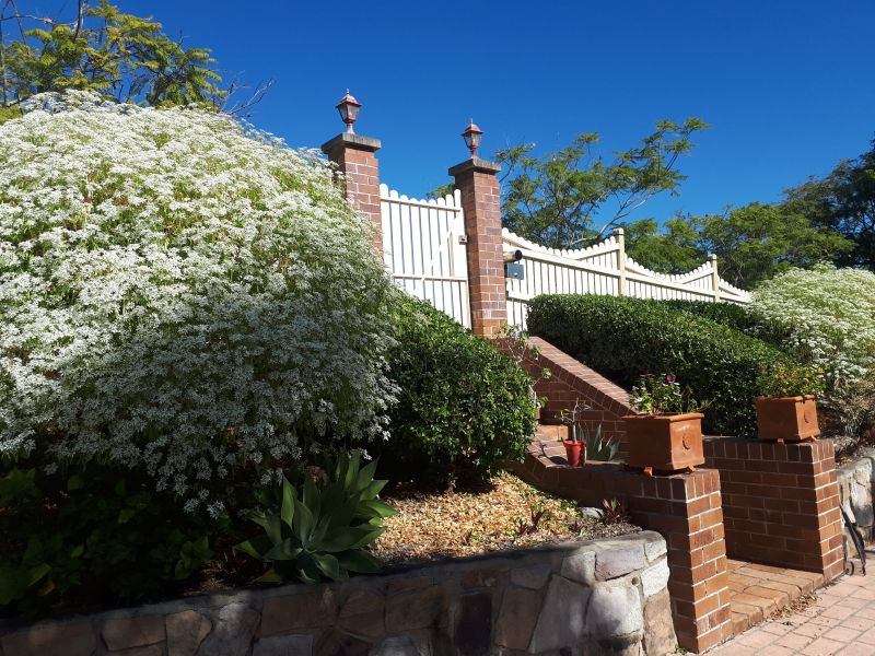 For Sale By Owner: 41 Oppermann Drive, Ormeau, QLD 4208