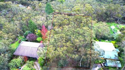 39 Shortland Street Wentworth Falls 2782