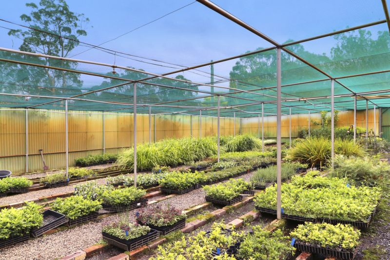 LAND  - 27 acres of magic bushland, & BUSINESS - established wholesale nursery to own, operate, or lease