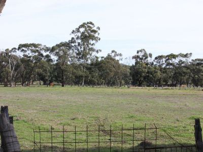 2 Hectare Blank Canvas on Hynes Road