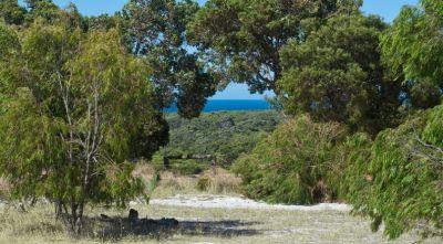 2 Sugarloaf  Road, Naturaliste