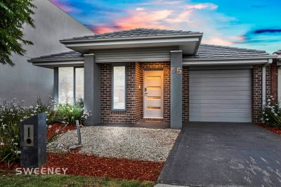 Immaculately Presented Family Home in Callaway Park Estate