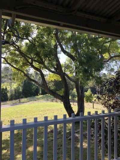 BUCKRA BENDINNI, NSW 2449