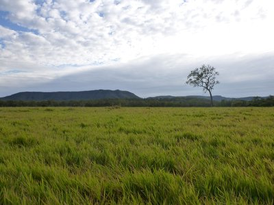 COOKTOWN, QLD 4895