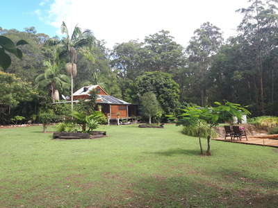 Rainforest Acreage