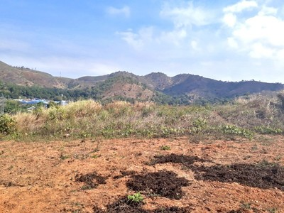 S7026 - Massive land for sale - WS