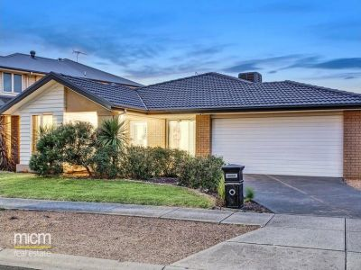 FIRST CLASS TENANT WANTED! Beautiful Family Home!