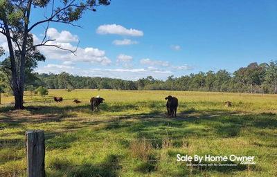 Huge 282 Acre livestock property + House!