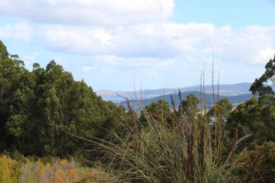 10 Acres with View