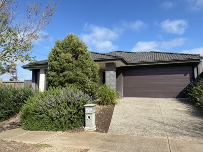 For health and Safety Please email the property manager of this property for a private viewing on david@sweeneyea.com.au