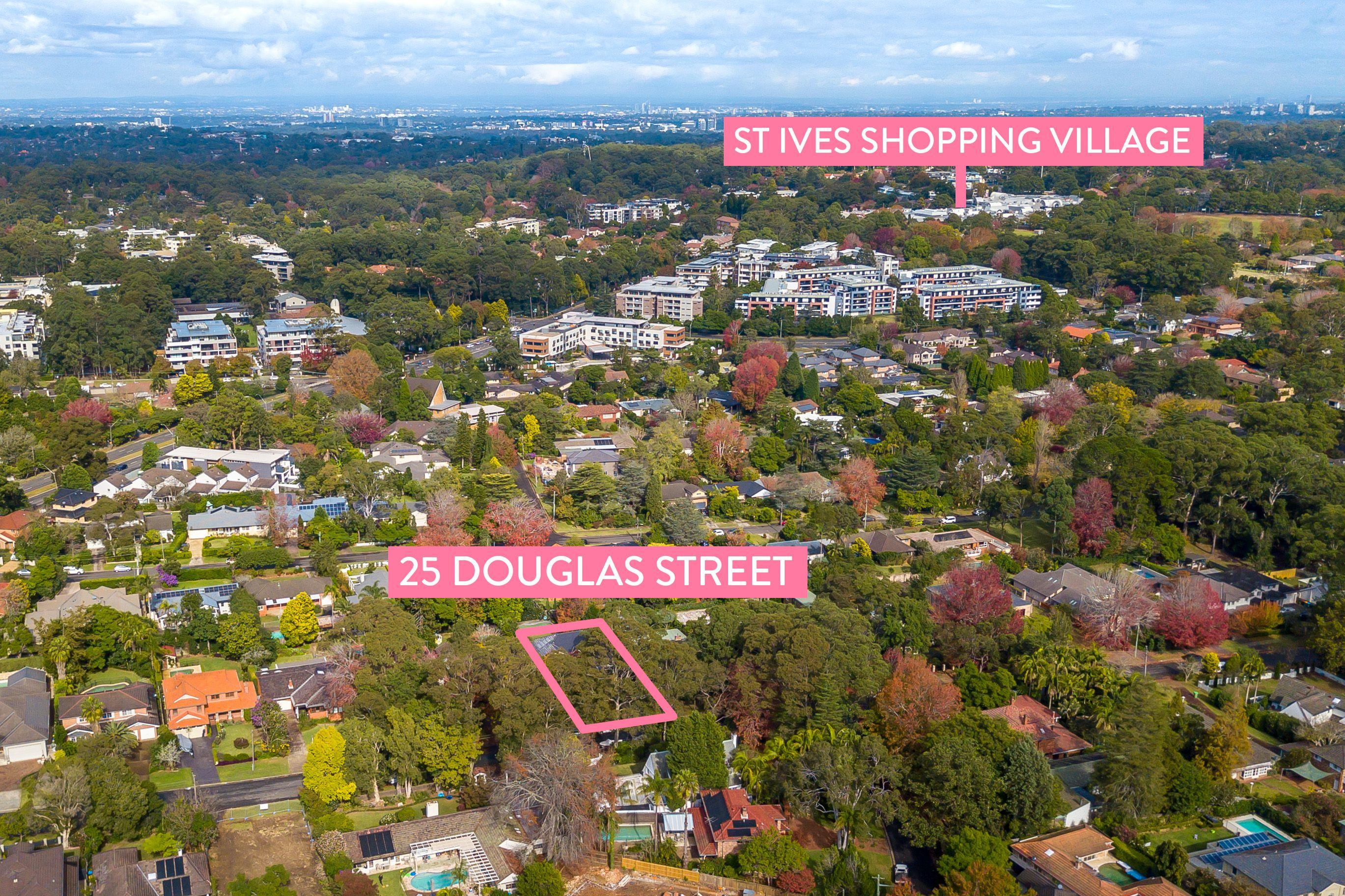 25 Douglas Street St Ives 2075