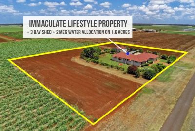 Immaculate Home + Big Sheds + Solar + Farm land + 2 Meg Water Allocation!