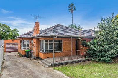 Enter the Property Market with this Renovators Delight!
