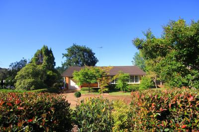 magical smaller acreage block with neatly presented bright 3 bedroom home.