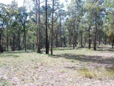 Lot 241 Millingandi Ridge Road, Millingandi