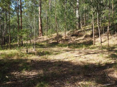 Seven Quiet Acres To Create The Lifestyle You've Always Wanted