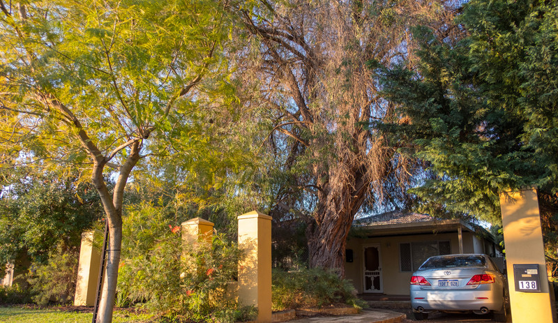 Lovely Cottage Style Home in Tree Lined Street