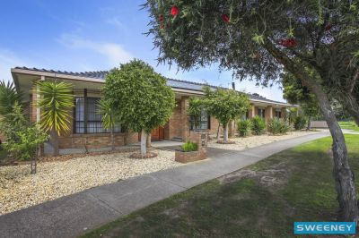 A Timeless Family Treasure on a 1000sqm (approx) Block