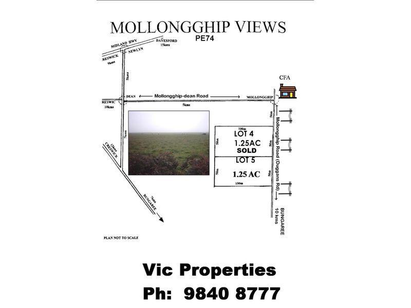 393 Mollongghip Road, Mollongghip VIC 3352