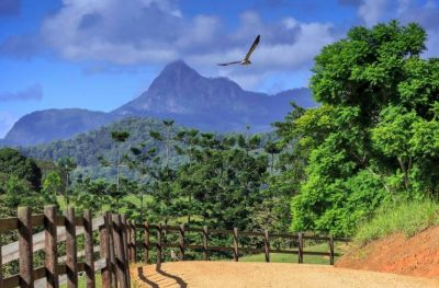 Private Country Estate in the Caldera of Iconic Mount Warning