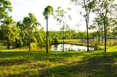 5 ACRE LIFESTYLE PROPERTY WITH DAM - READY TO BUILD ON!