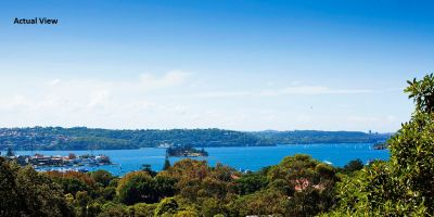 Grand Character Home in the Heart of Bellevue Hill Offers Ideal Northerly Aspect, Sundrenched Living & Expansive Views