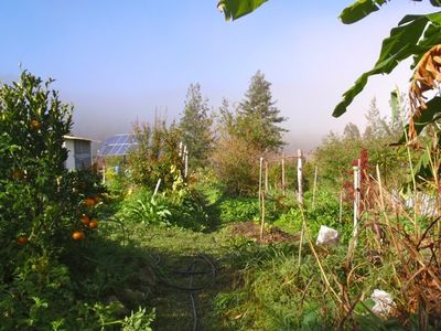 PRICE CHANGE Are you ready for home and business to live the Organic lifestyle in the serenity of nature and wilderness